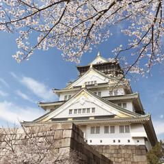 桜満開/花見/大阪城/桜/平成最後の一枚/春/... 先日、桜を見に大阪城に行ってきました♬ …