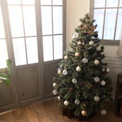 窓枠DIY/クリスマスツリー/オーナメント/トイザらス/クリスマス/DIY/... クリスマスツリー出しました(*´꒳`*)…