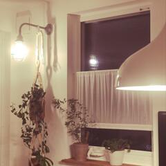 我が家の照明 我が家のダイニングの照明です。 テーブル…(1枚目)