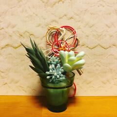 正月飾り/お正月2020 お正月のお花、今年は多肉植物(それも10…