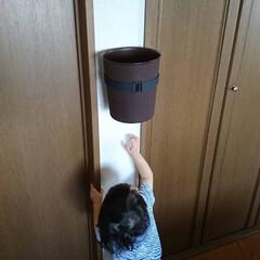 子供/子育て/便利/掃除/生活/ゴミ箱/... これめちゃくちゃよかったぁ🎵 子供のゴミ…