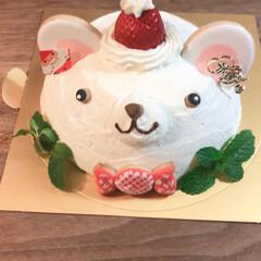 クリスマスケーキ/レッスン/クリスマス2019 今年のクリスマスケーキ。 レッスンで作り…