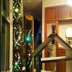 竹灯り 竹灯り🎵  マゴタチが見たいと言うので夕…