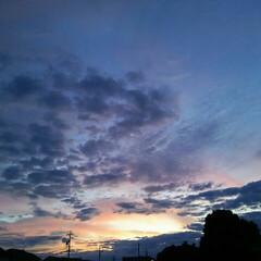 夕暮れ 今日の夕暮れ🎵  太陽は東京から昇り大阪…