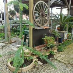 ガーデニング 庭の補修完了  柱が長年の風雨で傷んでき…