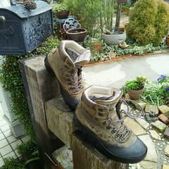 登山靴 登山靴