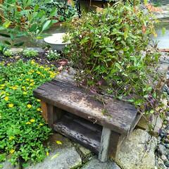 ガーデニング 花台🎵  材料が余ったので作りました~