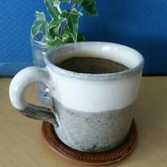マイカップ/信楽焼 マイコーヒーカップ  デスクで使っていま…