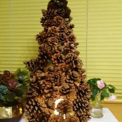クリスマスツリー/ガーデニング クリスマスツリー🎵  中にライトを入れて…(1枚目)