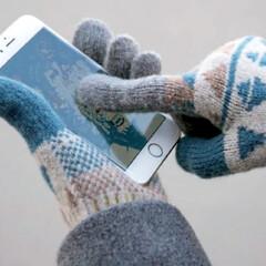 テスタバ/手袋/タッチグローブ/あったか/暖かい/クリスマス/... 日本製手袋  テスタバ タッチグローブ …