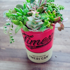 植物のある暮らし/小屋/多肉植物の寄せ植え/DIY/ハンドメイド/暮らし こんにちは👋 暇つぶしに多肉寄せ植えして…