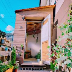 小屋/田舎暮らし/セリア/DIY/ハンドメイド/暮らし おはようございます☀️ 広島とてもいい天…