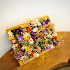 花画/小屋/ドライフラワーのある暮らし/セリア/DIY/ハンドメイド/... セリアの木箱にドライ達を詰め込んだ 花画…