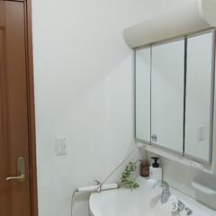 洗面所/洗面所インテリア/洗面所リフォーム 洗面所のリフォーム! クロスとCFを張り…