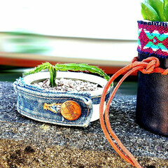 リメイク缶/多肉ちゃんの植木鉢に/多肉植物がある暮らし/多肉植物 リメ缶+リペア用のGジャン生地😊(1枚目)