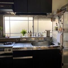 キャンドゥ/ダイソー/セリア/100均/DIY/キッチン収納/... 賃貸の古くて狭いキッチンですが、なんとか…
