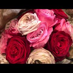 嬉しい贈り物/バラの花/ドライフラワー/プロポーズ/花束/雑貨/... 2月にプロポーズしていただいた 花束は結…