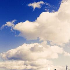 自然 低いところにある雲、なんだか不思議でした。