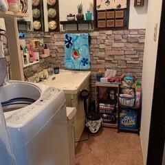 ここが好き 初めて自分で壁紙、洗面台の上を取り外し鏡…