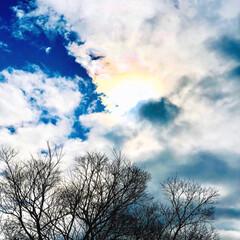 表情/風景/景色/空/今日の空/暮らし/... 今日の仕事の帰り道でパシャリ📸✨✨ 方角…