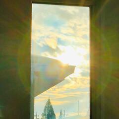 隙間/空/癒し/景色/朝/暮らし/... 朝、二階の寝室から一階リビングへ降りる途…
