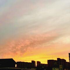美しい/風景/景色/夕方の空/夕日/空/... 今日の夕方の空🤩✨✨ 美しすぎた😍😍❤️…