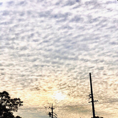 癒し/写真/風景/景色/空/フォロー大歓迎 夕方、娘の耳鼻科へ🏥👨⚕️ 道中、空の…