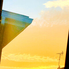 朝空/景色/空/青空/暮らし/フォロー大歓迎 今日も朝から綺麗な空🥰❤️✨✨✨