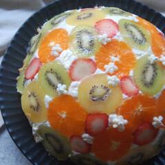 バナナ/いちご/グリーンキウイ/ゴールドキウイ/真穴みかん/レアチーズケーキ/... フルーツドームケーキを作りました。 真穴…