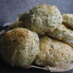 朝ごはん/野菜パン/小松菜パン/ホームベーカリー/手作りパン/おうち時間/... 小松菜パンを作りました。 刻んだ小松菜を…(1枚目)