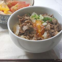 トマトのバジルソースかけ/卵の醤油漬け/めんつゆ/パプリカのマリネ/うなぎのタレ/牛丼/... 晩ごはんに牛丼を作りました。 めんつゆと…