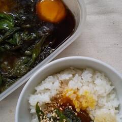 卵かけご飯/卵料理/大葉/1人ランチ/ランチ/おうちごはん/... 大葉と卵ののっけご飯作ってみました。 e…(1枚目)