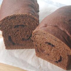 チョコチップ/ココア生地/ダブルチョコ食パン/ホームベーカリー/あさごぱん/朝ごはん/... ダブルチョコ食パンを作りました。 ココア…(1枚目)
