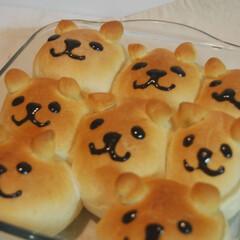 ちぎりパン/かわいいパン/柴犬/しばいぬ大好き/ホームベーカリー/手作りパン/... ちぎりパン焼きました。 犬の顔にしました。