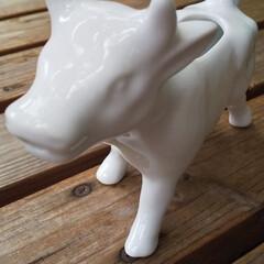 うし/ミルクポット/動物モチーフグッズ これはミルクポットです。 背中なら牛乳を…
