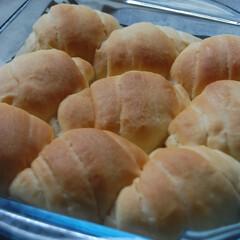 バターロール/ロールパン/ホームベーカリー/パン作り/手作りパン/あさごぱん/... おいしいバターを使って、 ぎゅうぎゅうロ…