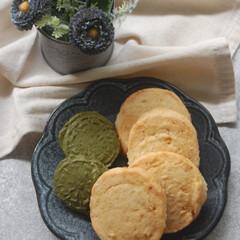 文旦クッキー/抹茶クッキー/文旦ジャム/アイスボックスクッキー/お菓子作り/手作りスイーツ/... 冷凍庫に余っていたアイスボックスクッキー…
