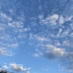 雲が好き/仕事帰り/空/雲 いつかの仕事帰り️️️⛅️(2枚目)