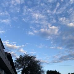 雲が好き/仕事帰り/空/雲 いつかの仕事帰り️️️⛅️(1枚目)