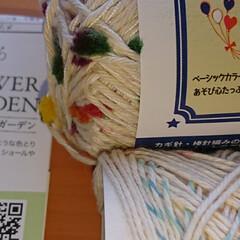 口金ポーチ/かぎ針編み 編み物 記録  セリアで見つけたポンポン…(2枚目)