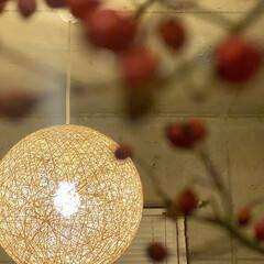 LOWYA/韓国雑貨/レイアウト/自室/マイルーム/キッチン/... お部屋を秋っぽく模様替え。 韓国雑貨の花…(4枚目)