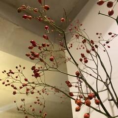 LOWYA/韓国雑貨/レイアウト/自室/マイルーム/キッチン/... お部屋を秋っぽく模様替え。 韓国雑貨の花…(3枚目)