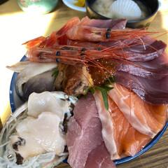 ボリューム満点/海鮮丼 今日の昼は苫小牧のマルトマ食堂 平日だけ…(1枚目)