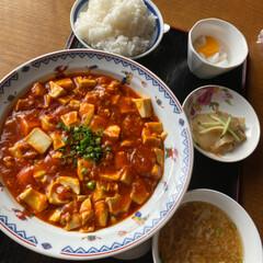 麻婆豆腐/ランチ 今回の岩見沢でのランチは成龍飯店で麻婆豆…