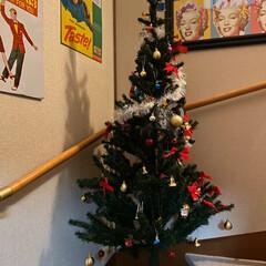 飾り/ツリー/クリスマス/住まい/ニトリ 帰って来たら今年もツリーを飾ってたよ🎄