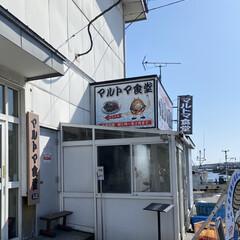 ボリューム満点/海鮮丼 今日の昼は苫小牧のマルトマ食堂 平日だけ…(3枚目)
