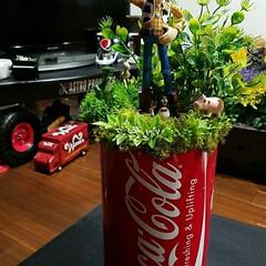食欲の秋 完成~\(^^)/ デカコカ・コーラ缶に…
