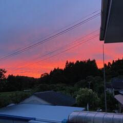 「さらに赤く染まる最近の夕焼け。」(2枚目)