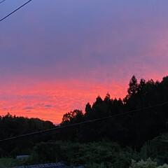 「さらに赤く染まる最近の夕焼け。」(1枚目)