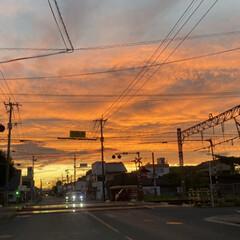 「最近の夕焼け。不気味だけど空一面オレンジ…」(2枚目)